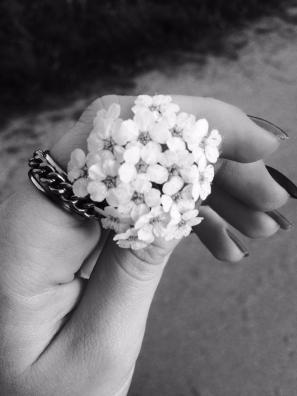 mopana-white-little-flowers-06