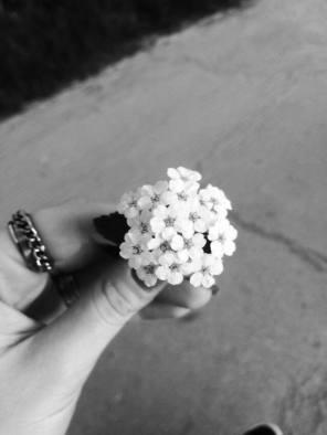 mopana-white-little-flowers-02