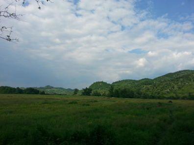mopana-the-silence-of-the-mountains-02