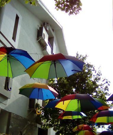 mopana-colors-in-the-sky-02