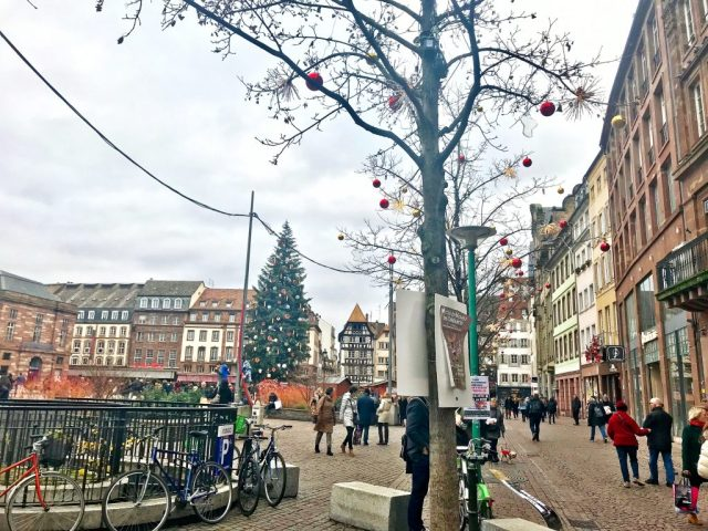 Strasbourg Christmas main square Christmas tree