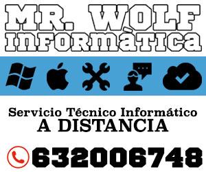Mr Wolf Informatica - Servicio técnico Informático a distancia