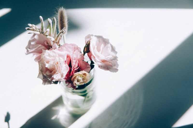 light love people flowers