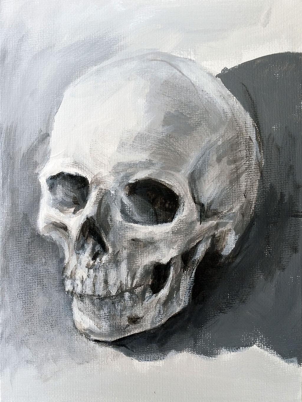 0002-Skull-Value-Study-1