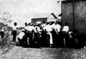 A meeting of gold miners at Reedy formulating their beer strike. Photo: Perth Daily News February 4 1936.