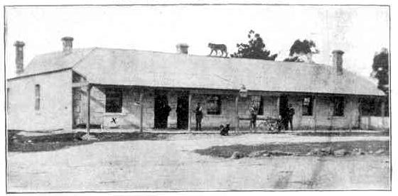 tiger hotel 1911
