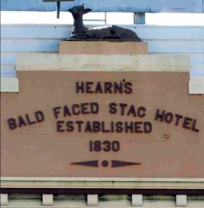 bald faced stag hotel leichardt facade
