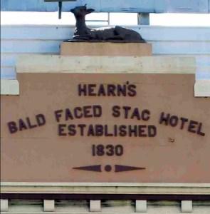 bald faced stag hotel leichardt facade