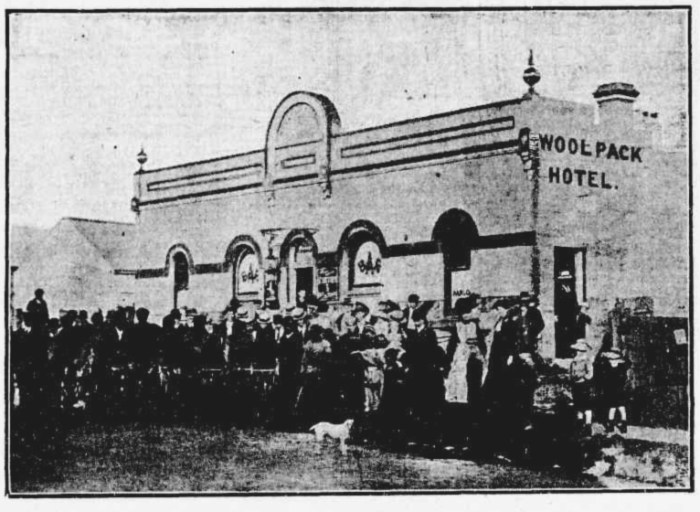 woolpack hotel canterbury NSW