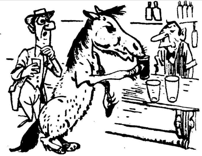 cloudy beer drinking horse 1953
