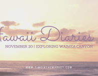 Hawaii Diaries #6 – Exploring Waimea Canyon and Hiking