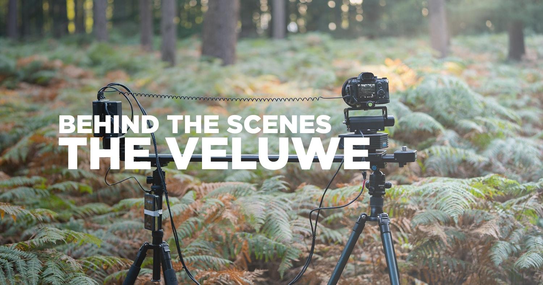 The Veluwe