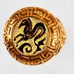 anello rosso ippocampo giallo