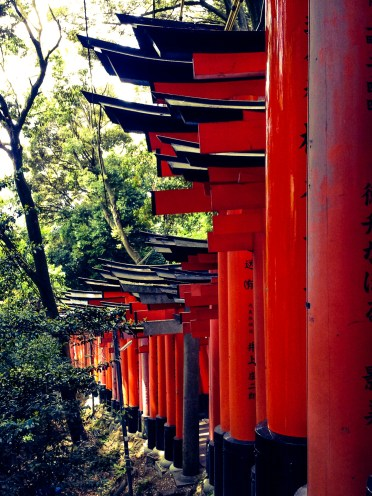 Fushimi Inari Taisha Shrine in Kyoto: Bright orange torii gates lined-up all the way to the top of this mountain.