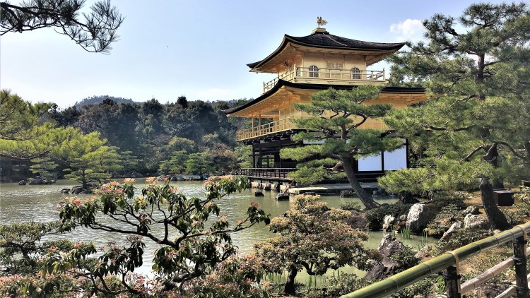 Kyoto: Kinkakuji, the Golden Pavilion, set in a pond surrounded by luscious greenery