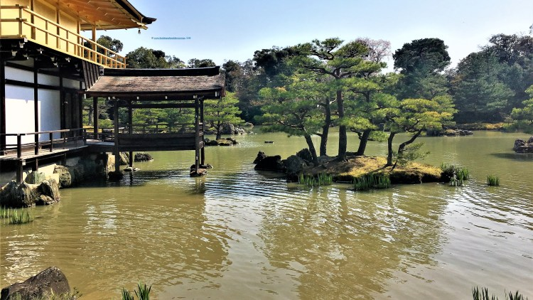 Kinkaku-ji, the Golden Temple in Kyoto is surrounded by little islands dotted everywhere..