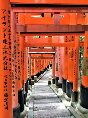 Fushimi Inari Shrine in Kyoto: The long steps up ...this is a Shinto shrine and the etiquette here varies to a Buddhist temple. These steps are sometimes steep.