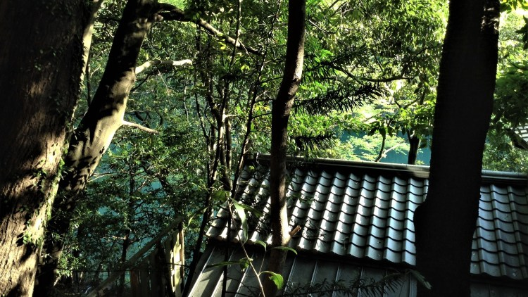Exploring the hills in Arashiyama, Kyoto led us to discover some hidden gem! Can you see Katsura River down below?