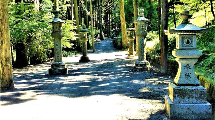 Stone lanterns along the trail, paves the way to explore what's beyond and in the forest.