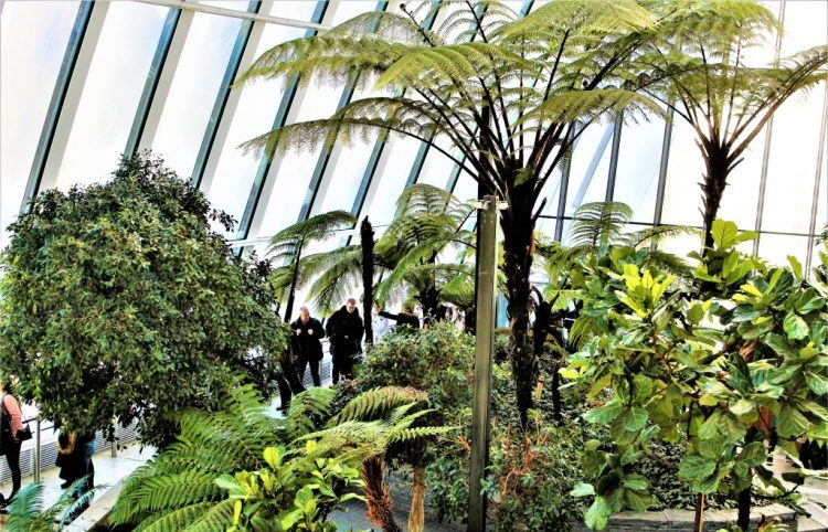 Lush green all year round at Sky Garden in London