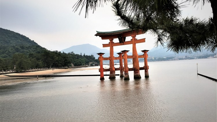 Miyajima Island: | Japan: This floating torii gate floats freely, showcasing a remarkable engineering masterpiece as it is weighted down by its own weight