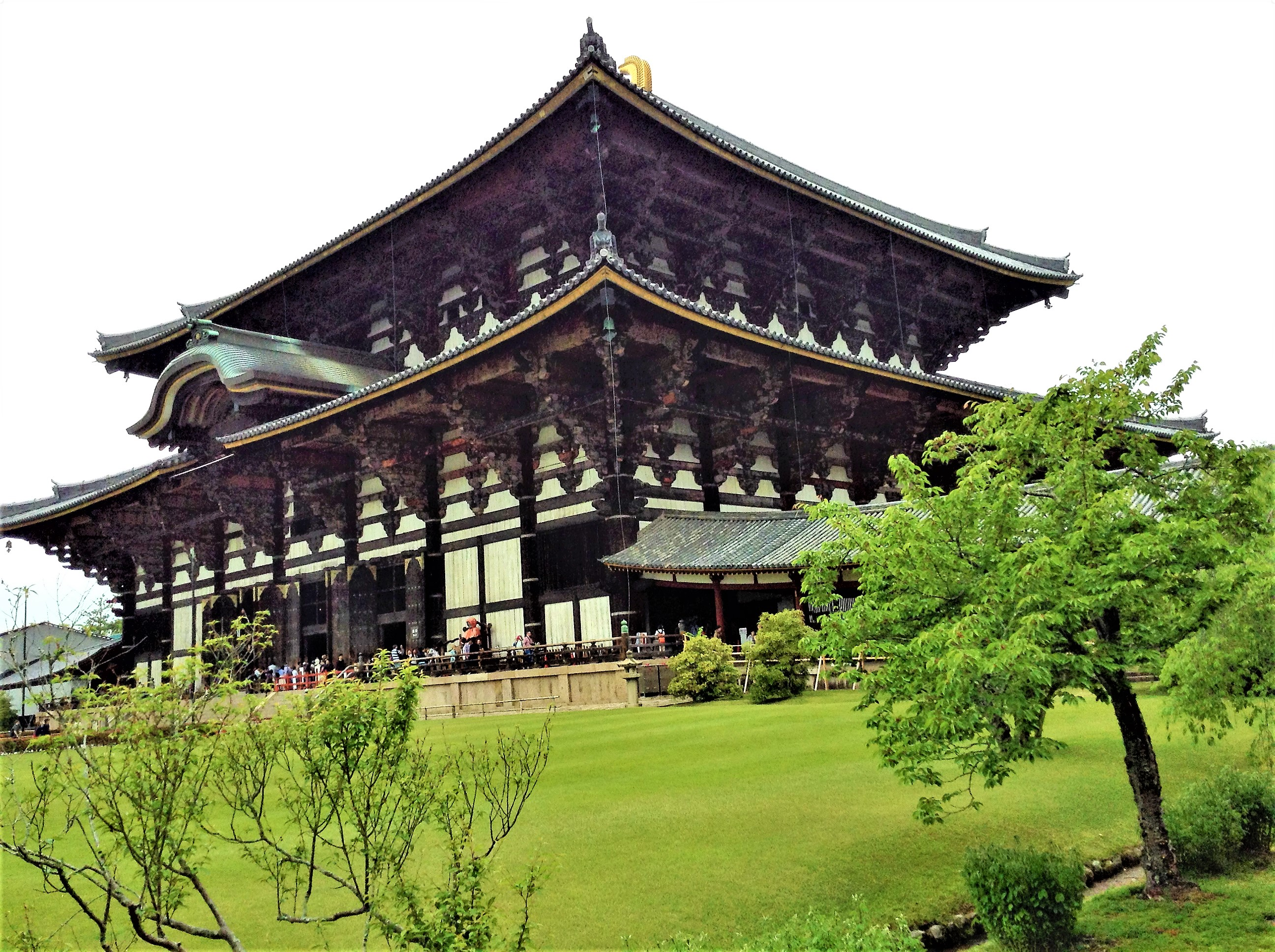 6 Ways to experience Nara, Japan via @GGeorgina_timelesstravelsteps/