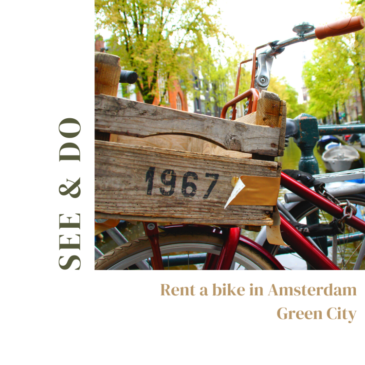 Amsterdam | See and Do | rent a bike