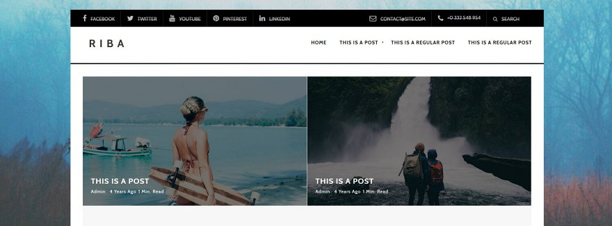 Riba Lite Free WordPress Theme