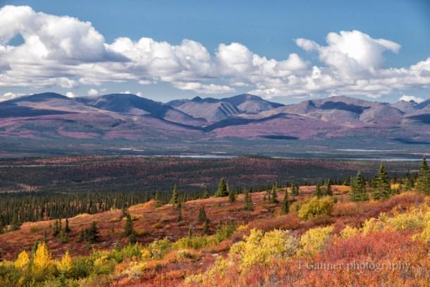 Alaska, autumn, foliage, Denali Highway, tundra