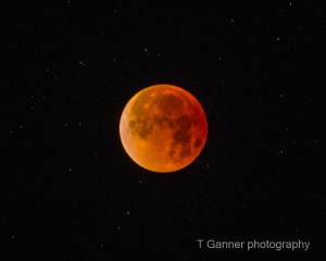 supermoon, bluemoon, blood moon, lunar ecplipse, super blue blood moon