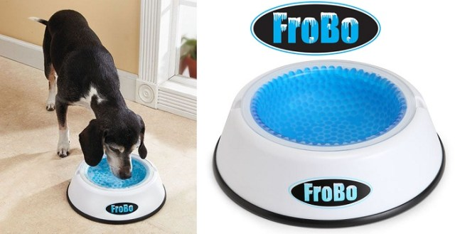 Cool gadgets accessories for dogs