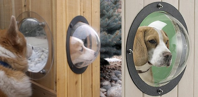 Window for pets - Cool pets gadgets