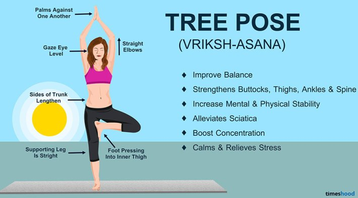 Tree Pose (Vrikshasana) - Yoga for Beginners