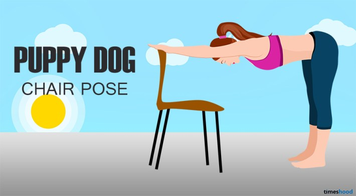Puppy dog on chair Yoga Pose