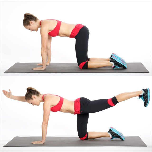 How to get toned abs in 2 weeks? Practice bird dog exercise for abs. Abs workout challenge for fitness lover. Abs exercise.