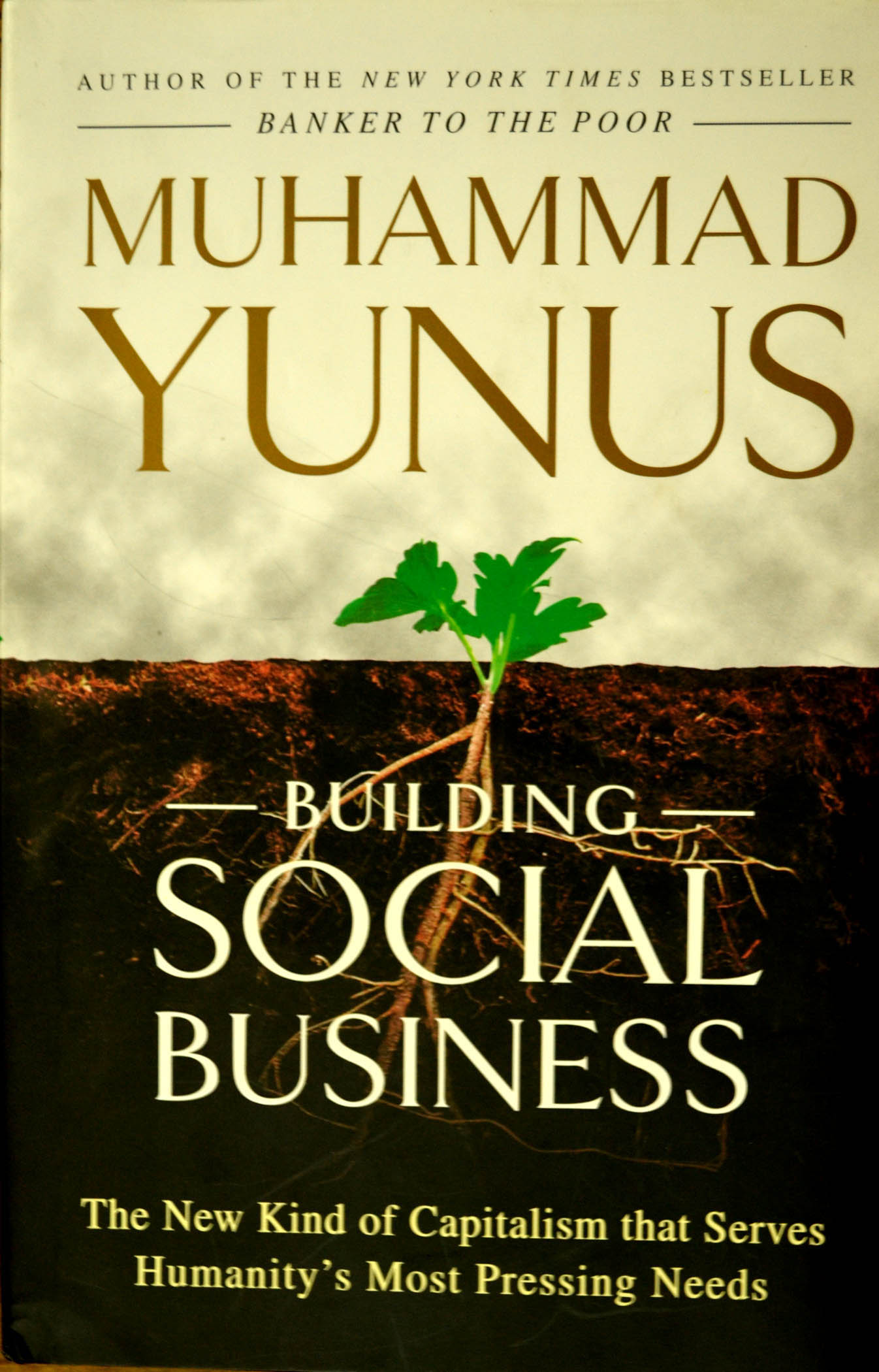 building social business Buy building social business: the new kind of capitalism that serves humanity's most pressing needs reprint by muhammad yunus (isbn: 9781586489564) from amazon's book store everyday low prices and free delivery on eligible orders.