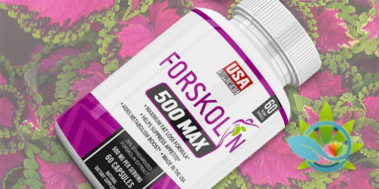 USA Supplements Forskolin 500 Max