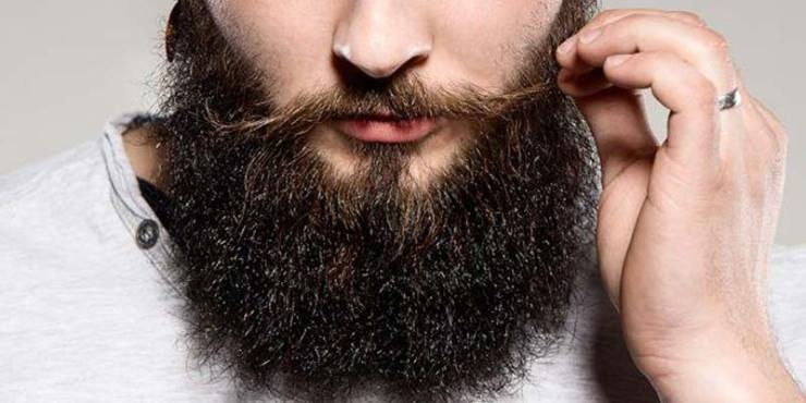 Reviewing The Best Beard Oil of 2019