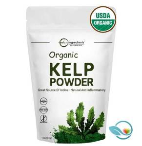 Micro Ingredients Superfoods Organic Kelp Powder