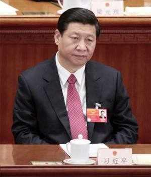 Xi Jinping takes helm of China amid reform calls