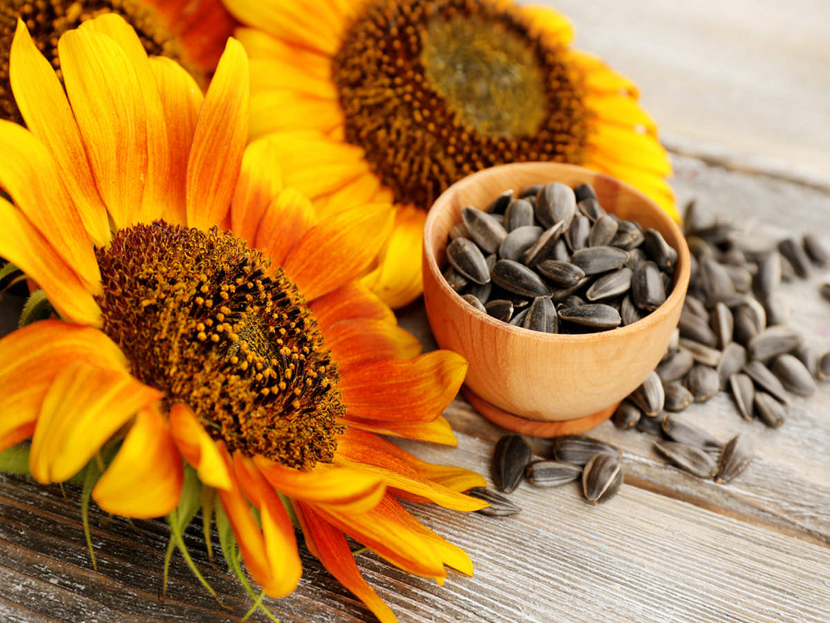 Eating sunflower seeds will have these benefits