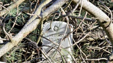 Military headstones remain standing after branches fell around but not on the markers at Fort Rosecrans National Cemetery in Point Loma. Photo by Chris Stone