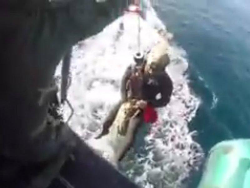 Long Beach Dive rescue-LASD