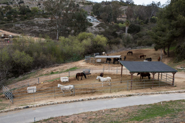 HiCaliber Horse Rescue's Valley Center property shown on March 2, 2018. (Megan Wood/inewsource)