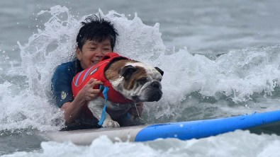 An owner rides a surfboard with his dog in the Helen Woodward Dog Surf-a-thon at Del Mar Beach.