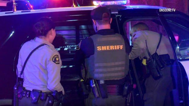 Deputies question suspect