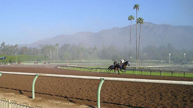 Racing Season Ends at Santa Anita Park Amid Protests, 30 Horse ...