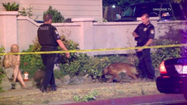 Police investigate the shooting in Escondido