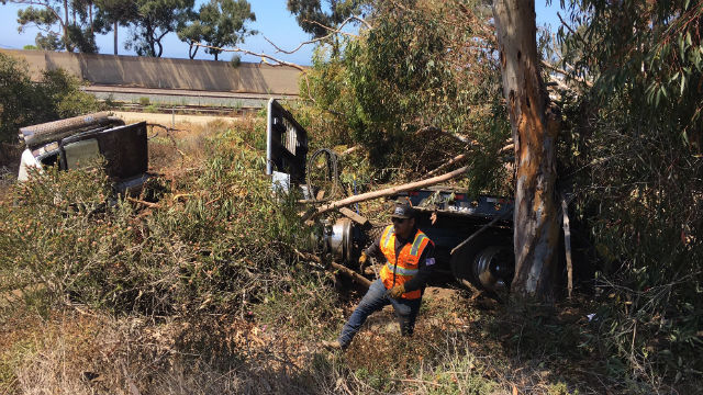 Overturned crane in brush