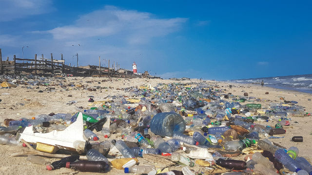 Plastic pollution on a beach in West Africa